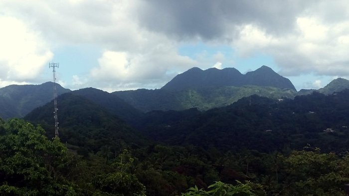 Mount Gimie, St Lucia